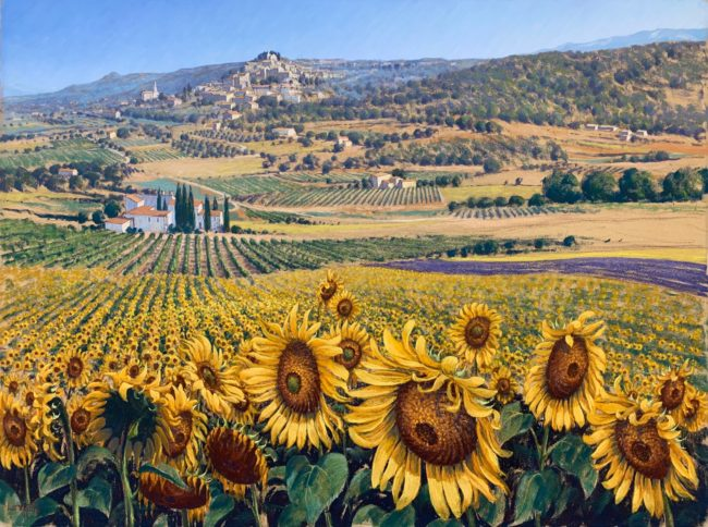 Lionel Aggett Sunflowers in Bonnieux Provence France Landscape